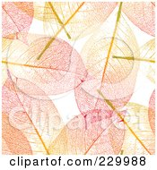 Royalty Free RF Clipart Illustration Of A Colorful Background Of Autumn Colored Skeleton Leaves by Anja Kaiser