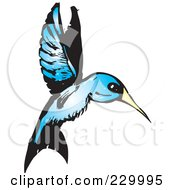 Royalty Free RF Clipart Illustration Of A Blue Hummingbird In Flight by xunantunich