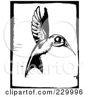 Black And White Woodcut Styled Hummingbird With A Black Border