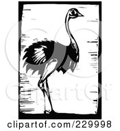 Royalty Free RF Clipart Illustration Of A Black And White Woodcut Styled Ostrich With A Black Border