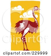 Wild Ostrich Over Orange With Clouds