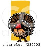 Wild Turkey Bird Over Orange
