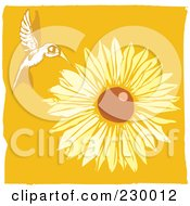 Royalty Free RF Clipart Illustration Of A Wild Hummingbird Hovering Near A Sunflower Over Orange by xunantunich
