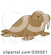 Royalty Free RF Clipart Illustration Of A Happy Walrus