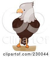 Royalty Free RF Clipart Illustration Of A Cute Bald Eagle by BNP Design Studio