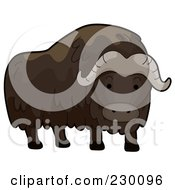 Royalty Free RF Clipart Illustration Of A Cute Musk Ox