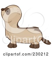 Royalty Free RF Clipart Illustration Of A Cute Ferret In Profile