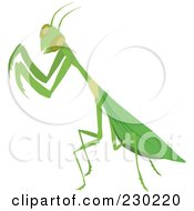 Royalty Free RF Clipart Illustration Of A Green Praying Mantis by Dennis Holmes Designs