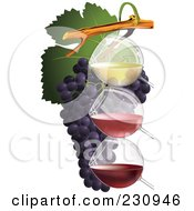 Royalty Free RF Clipart Illustration Of Three Glasses Of Wine With Grapes 1 by Eugene