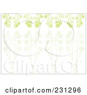 Green Horizontal Floral Border Background