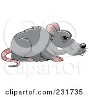 Royalty Free RF Clipart Illustration Of A Mean Gray Rat by Cory Thoman
