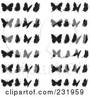 Digital Collage Of Black And White Butterflies 2