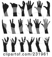 Digital Collage Of Black And White Hands 2