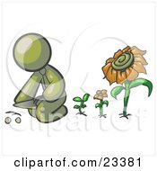 Clipart Illustration Of An Olive Green Man Kneeling By Growing Sunflowers To Plant Seeds In A Dirt Hole In A Garden