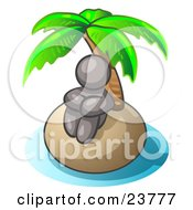 Gray Man Sitting All Alone With A Palm Tree On A Deserted Island by Leo Blanchette