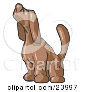 Clipart Illustration Of A Brown Tick Hound Dog Howling Or Sniffing The Air by Leo Blanchette