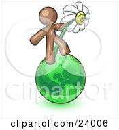 Brown Man Standing On The Green Planet Earth And Holding A White Daisy Symbolizing Organics And Going Green For A Healthy Environment