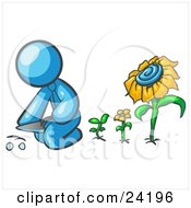 Clipart Illustration Of A Light Blue Man Kneeling By Growing Sunflowers To Plant Seeds In A Dirt Hole In A Garden