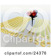 Beautiful Rose Sticking Up Out Of A Golden Barcode On A White Background
