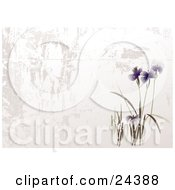Clipart Illustration Of Blooming Purple Asian Flowers In A Garden Over A Textured White And Gray Background