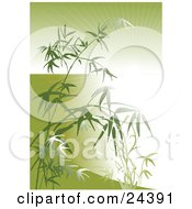 Clipart Illustration Of A Bright Burst Of Light Beaming Through Bamboo Stalks And Leaves Over Green by Eugene #COLLC24391-0054