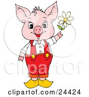 Clipart Illustration Of An Adorable Pink Piggy In Red Pants And Suspenders Holding A White Spring Daisy by Alex Bannykh