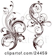 Two Grunge Worn Flourished Vines Over A White Background