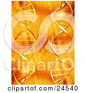 Clipart Illustration Of A Faded And Bold Double Helix DNA Strands Over An Orange Background
