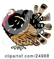 Clipart Picture Of A Chubby Brown Black And Red Turkey Bird With His Head Tucked In His Neck