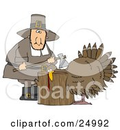 Turkey With Its Head On A Chopping Block About To Get His Head Cut Off By A Pilgrim Man With An Ax
