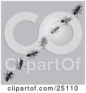 Clipart Illustration Of A Glowing Worker Ant In A Diagonal Line Of Other Ants On A Gray Surface