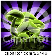 Clipart Illustration Of A Group Of Green Glowing Mushrooms On A Reflective Black Surface With A Bursting Purple And Black Background