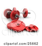 Set Of Red Dumbbells With Round Weights Resting On The Floor Of A Gym