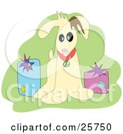 Clipart Illustration Of An Adorable Little Tan Puppy Dog With A Peace Collar Sitting With Christmas Gifts Over Green by bpearth