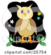 Brown Owl Perching On A Tree Branch Against A Black Night Sky With Yellow Blue White And Pink Stars