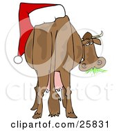 Clipart Illustration Of A Brown Dairy Cow With A Santa Hat On Its Butt Grazing On Grass And Looking Back