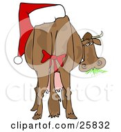 Clipart Illustration Of A Brown Dairy Cow With A Red Bow On Its Tail And A Santa Hat On Its Butt Grazing On Grass And Looking Back