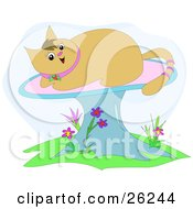 Clipart Illustration Of A Happy Brown Kitty Cat With A Pink Ringed Tail Sun Bathing On A Mushroom