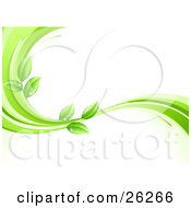 Clipart Illustration Of An Organic Background Of Green Leaves Wet With Dew Drops On A Green And White Wave Over White