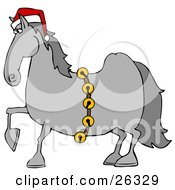 Handsome Gray Horse Decked Out In A Red Santa Hat And Golden Jingle Bells On Christmas
