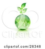 Clipart Illustration Of A Green Seedling Plant Sprouting From A Green Earth Over A Reflective White Surface by beboy