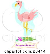 Clipart Illustration Of A Pink Flamingo Bird Standing With One Leg Up Over A Congratulations Banner by bpearth