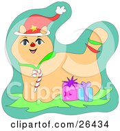 Clipart Illustration Of A Happy Christmas Cat Wearing A Santa Hat And Candy Cane Collar Standing With Two Gifts by bpearth