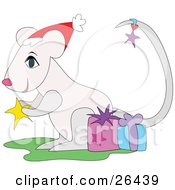 Clipart Illustration Of A White Christmas Mouse Wearing A Santa Hat Holding A Star And Standing With Gifts by bpearth