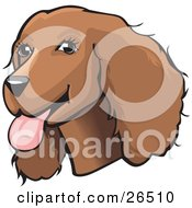 Clipart Illustration Of A Friendly Brown Cocker Spaniel Dog With Its Tongue Hanging Out Of Its Mouth by David Rey