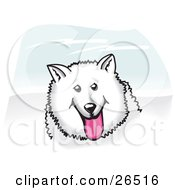 Clipart Illustration Of A Fluffy And Friendly White American Eskimo Dog Hanging Its Pink Tongue Out