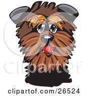 Clipart Illustration Of A Friendly Brown Affenpinscher Dog by David Rey