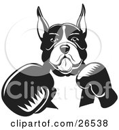 Clipart Illustration Of A Boxer Dog With Cropped Ears Fighting With Boxing Gloves Black And White by David Rey