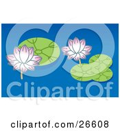 Clipart Illustration Of Two Pink Lotus Flowers And Green Lilypads On A Blue Pond by NoahsKnight