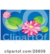 Clipart Illustration Of Two Pink Lotus Flowers Floating With Lilypads On A Blue Pond